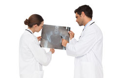 Medical team analysing an xray together Royalty Free Stock Photography