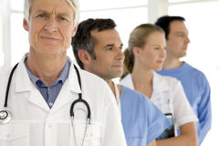 Medical team. Portrait of a medical team with senior leader Stock Images