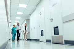 Medical team walking down hallway at the hospital. Full length shot of medical team walking down hallway at the hospital. Doctors with nurse walking in hospital royalty free stock photo