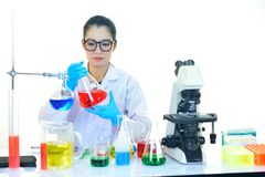 Medical technologist working in laboratory. Asian female medical technologist working in research laboratory Royalty Free Stock Image