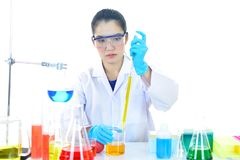 Medical technologist working in laboratory. Asian female medical technologist working in research laboratory Stock Photography
