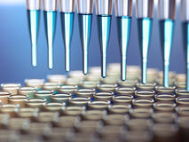 Medical test / research royalty free stock image