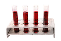 Medical test tubes in holder on white Royalty Free Stock Photos