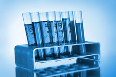 Medical test tubes in stand Stock Photography