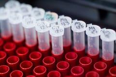 Medical tests. test-tubes. Royalty Free Stock Image