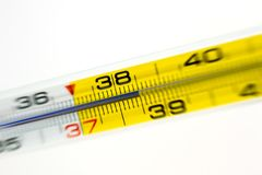 Medical thermometer Stock Image