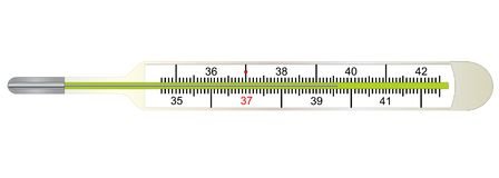Medical thermometer for measuring human body temperature Stock Photos