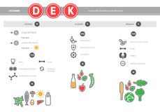 Medical vitamins D, E, K source infographics. Healthy food icons set. Vector proper nutrition colorful linear elements Stock Photos