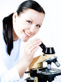 Medical woman researching on a mi Stock Images