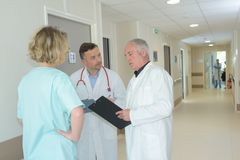 Medical workers in discussion in hallway. Medical royalty free stock photos