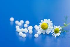 Medicamentação homeopaticamente Imagem de Stock