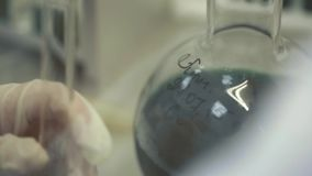 Medican Test in Lab. Handheld shot of scientist in light blue smock doing chemical test or making experiment in modern laboratory. Many test tubes and other stock footage