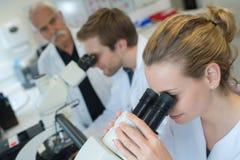 Medici che lavorano nel laboratorio con il microscopio Immagine Stock Libera da Diritti