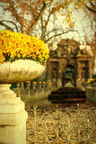 Medici Fountain Royalty Free Stock Photos