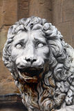 Medici Lion Stock Photography