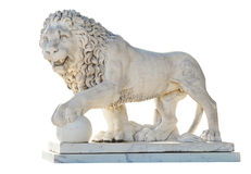 Medici lion isolated on white background Stock Photography
