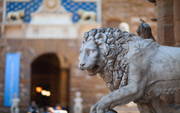 Medici Lion sculpture. Florence, Italy. Stock Image