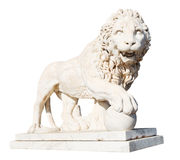Medici lion with stone ball isolated on white Stock Photo