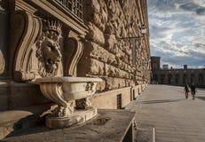 Medici Pitti宫殿狮子顶头喷泉  免版税库存照片