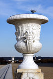 Medici Vase Stock Images