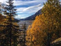 Medicin Lake Royaltyfria Bilder