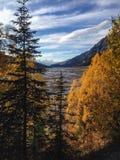 Medicin Lake Arkivbilder