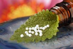 Medicina alternativa Fotos de Stock Royalty Free