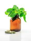 Medicina alternativa Fotografia Stock Libera da Diritti