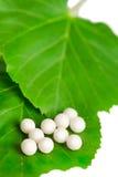 Medicina alternativa. Comprimidos homeopaticamente imagens de stock royalty free