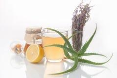 Medicina alternativa de las hierbas curativas Fotos de archivo libres de regalías