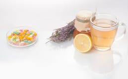 Medicina alternativa delle erbe curative immagini stock libere da diritti