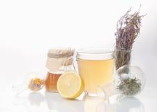 Medicina alternativa delle erbe curative immagine stock libera da diritti