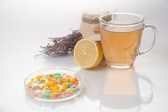 Medicina alternativa delle erbe curative fotografia stock