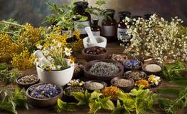 Medicina alternativa, ervas secadas e almofariz na parte traseira de madeira da mesa foto de stock