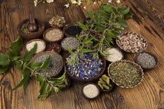 Medicina alternativa, fondo secado de las hierbas Fotos de archivo libres de regalías