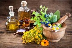 Medicina alternativa, medicina di erbe Fotografia Stock Libera da Diritti