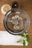 Medicina alternativa. terapia di biloba del ginkgo Immagini Stock