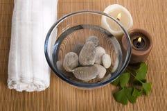 Medicina alternativa. terapia do biloba do ginkgo Fotos de Stock Royalty Free