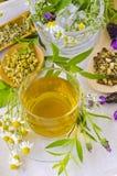 Medicina alternativa Terapia erval fotos de stock