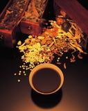 Medicina china Fotografía de archivo libre de regalías