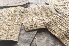 Medicina china tradicional de la corteza de Eucommia Ulmoides Oliv. Imagen de archivo