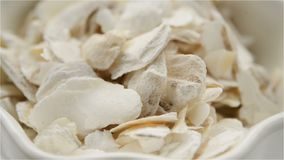 Medicina cinese dell'erba del Concha di Ostreae o di rotazione comune della conchiglia di ostrica archivi video