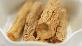 Medicina cinese dell'erba del pilosula di Codonopsis stock footage