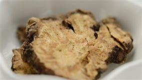 Medicina cinese dell'erba di Chuanxiong Rhizoma o della rizoma del sedano di montagna del Szechwan video d archivio