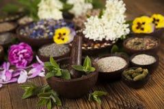 Medicina de las hierbas y fondo de madera del vintage Foto de archivo