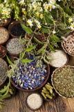 Medicina de las hierbas y fondo de madera del vintage Foto de archivo libre de regalías