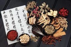 Medicina di cinese tradizionale Immagini Stock Libere da Diritti