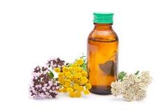 Medicina di erbe Fotografie Stock