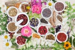 Medicina di erbe alternativa Fotografia Stock Libera da Diritti