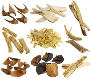 Medicina di erbe: Assortimento dell'erba cinese secca Immagini Stock
